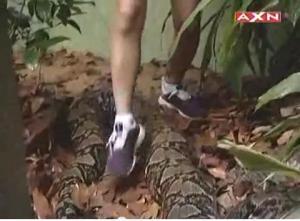snake step