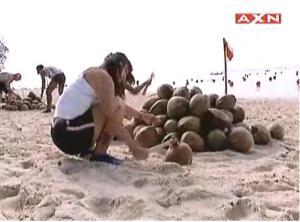 zabrina coconut