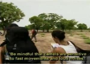 marianna camel