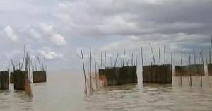 cambodia scenery 5