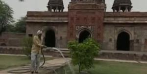 delhi greeter