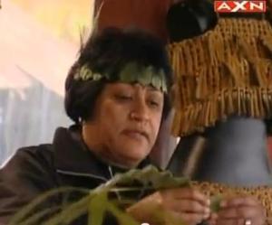 rotorua flax 2