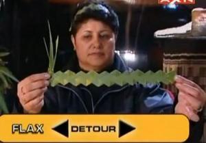 rotorua flax