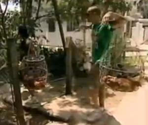 vietnam geoff tisha 5