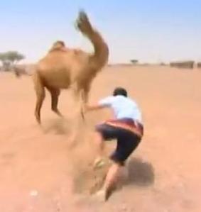 finish sam camel 4