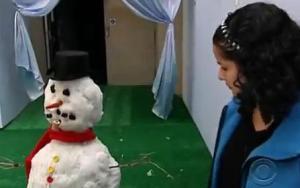 emirates snowman 5