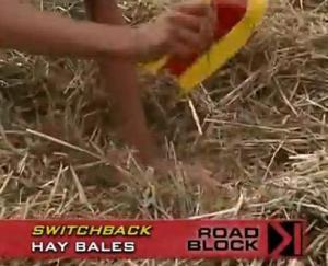 sweden hay bales