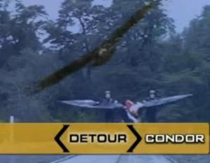 petrohue condor 3