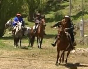 san carlos de bariloche horse 2