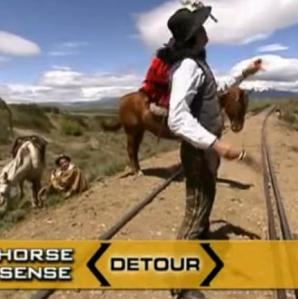 san carlos de bariloche horse sense