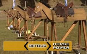 san carlos de bariloche horse