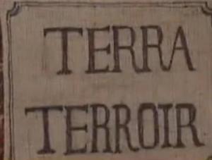 reims terra terroir