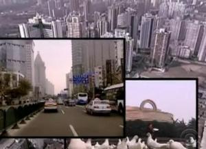 shanghai welcome 3