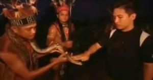 kota kinabalu snake 3