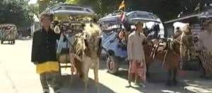 lombok cidomo