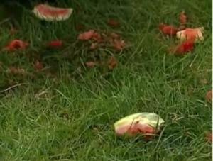 london melon