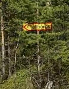 sweden arrow