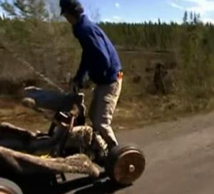 sweden bear 2