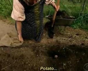 st petersburg potatoes 2