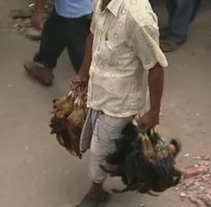 dhaka chicken