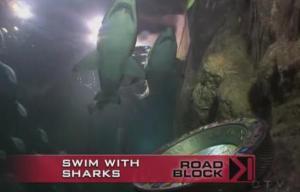 manly shark 3