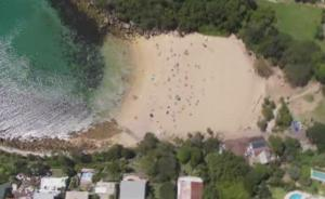 manly shelly beach