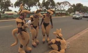 outback kangaroo 5