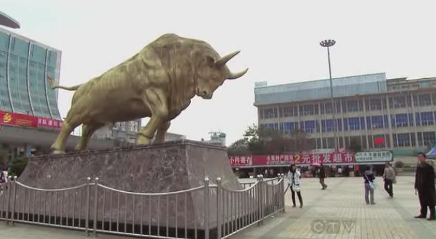 kunming again bull