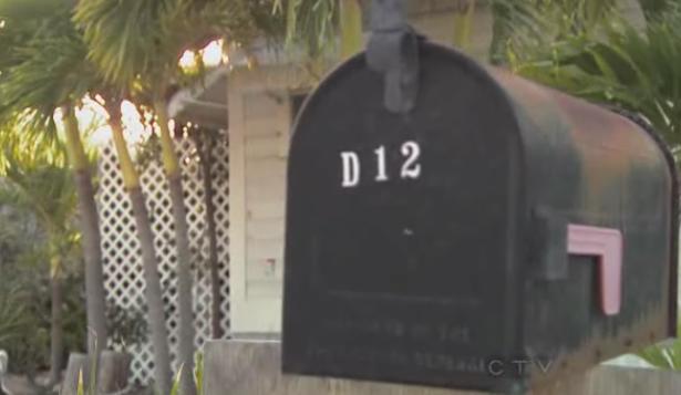 miami d12