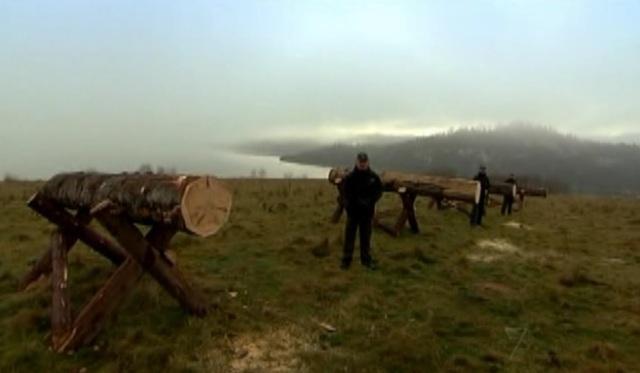 krakow logs