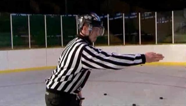 zimni referee 2