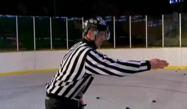 zimni referee
