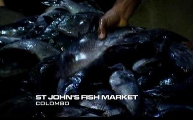 colombo fish 3