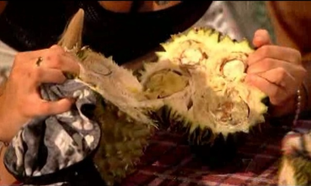 perth durian 3
