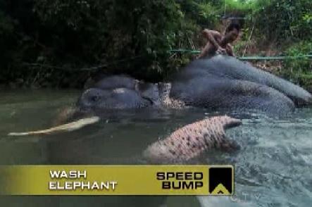 bangkok speed bump 1