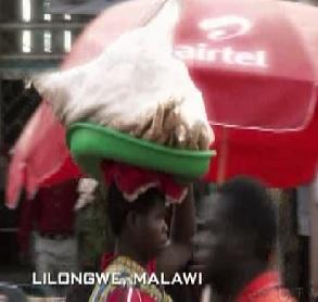 lilongwe head