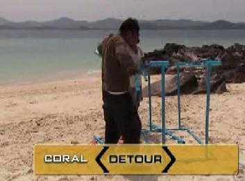 phuket coral 3