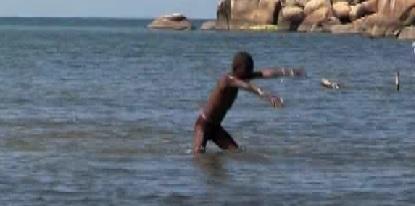 salima cartwheel
