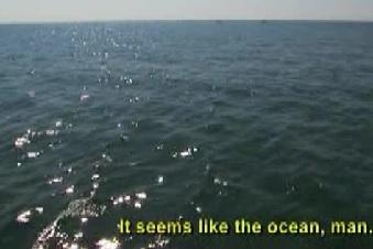 salima ocean