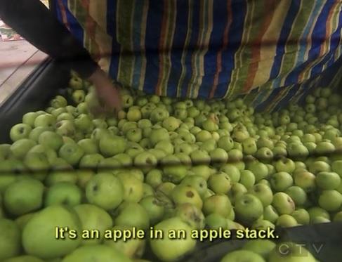 baku apple 3