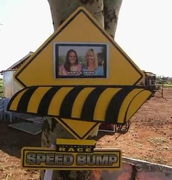 karatu speed bump